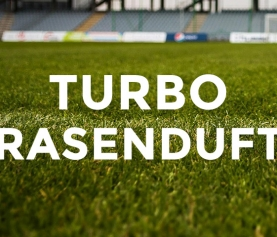 Turbo Raumerfrischer Rasenduft 600 ml